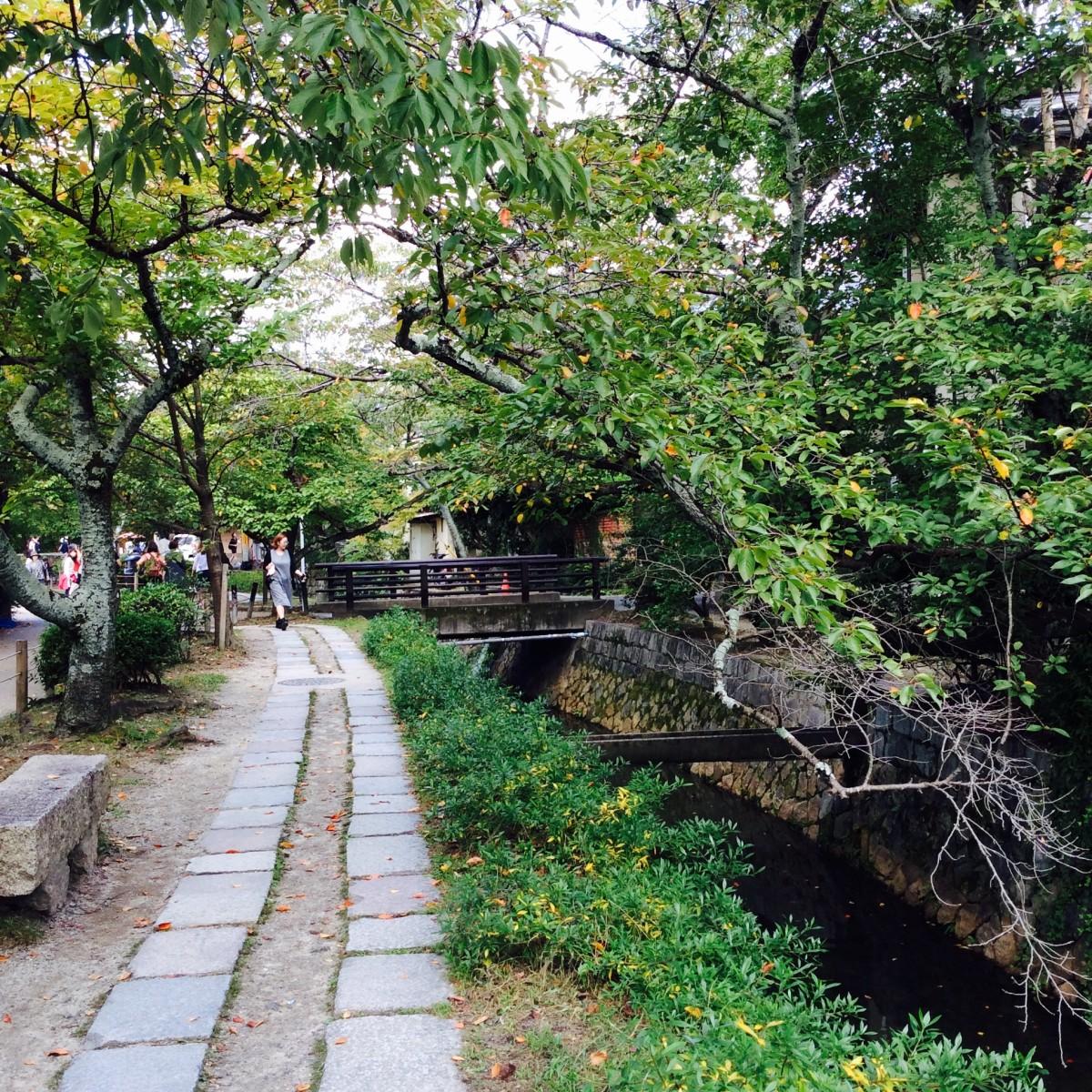 Kyoto-Japan-73