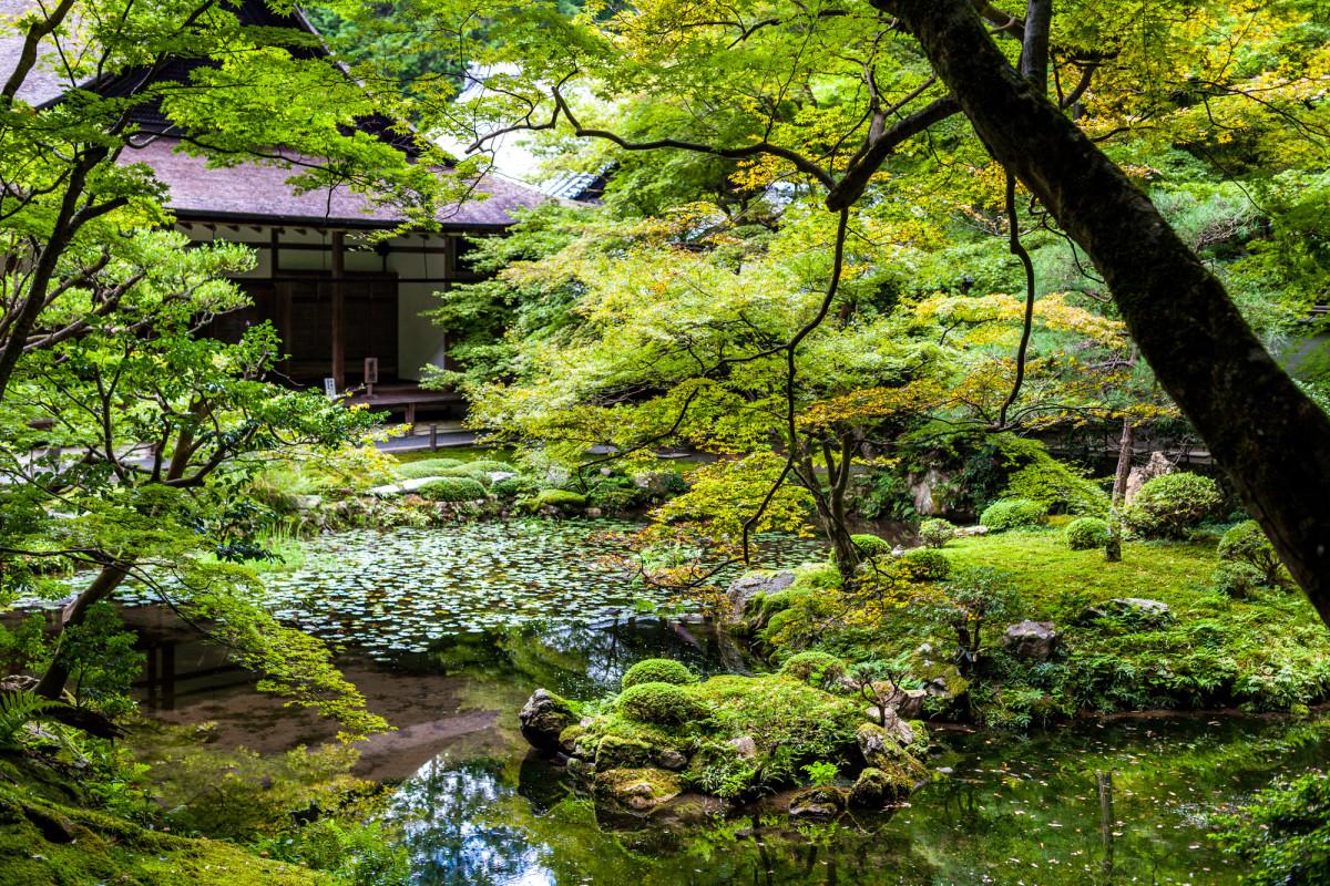 Kyoto-Japan-8