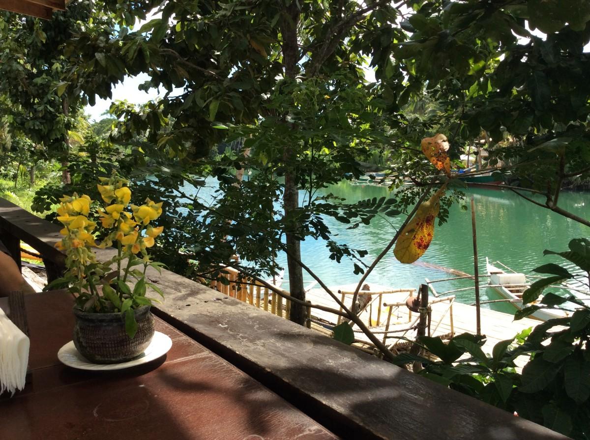 Loboc-River-Bohol-Philippinen-21