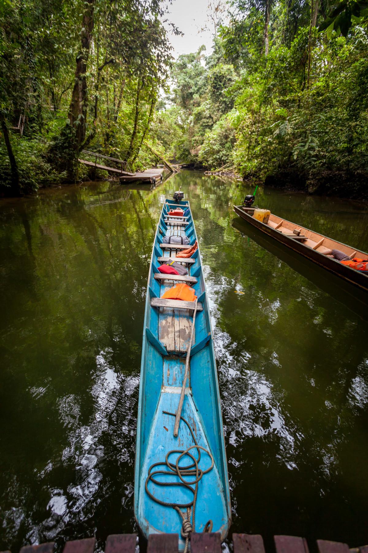 Gunung-Mulu-National-Park-Borneo-15