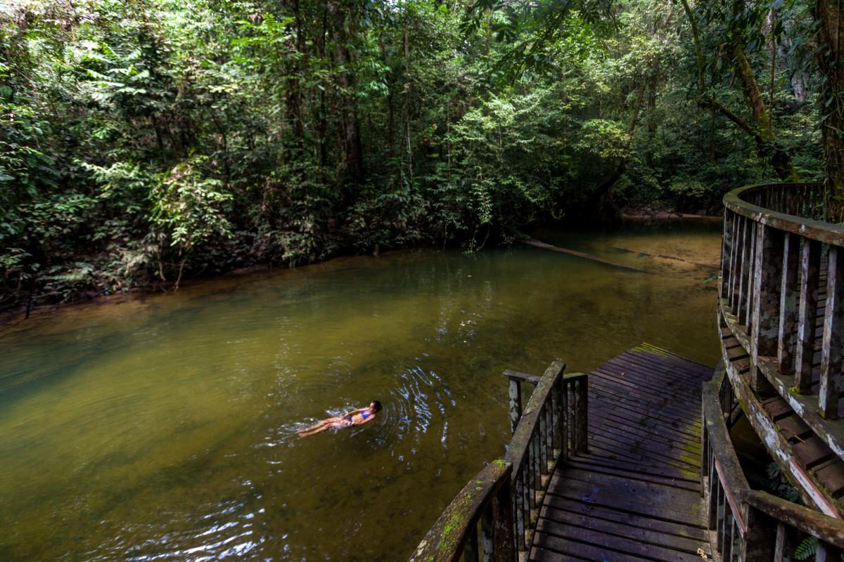 Gunung-Mulu-National-Park-Borneo-19