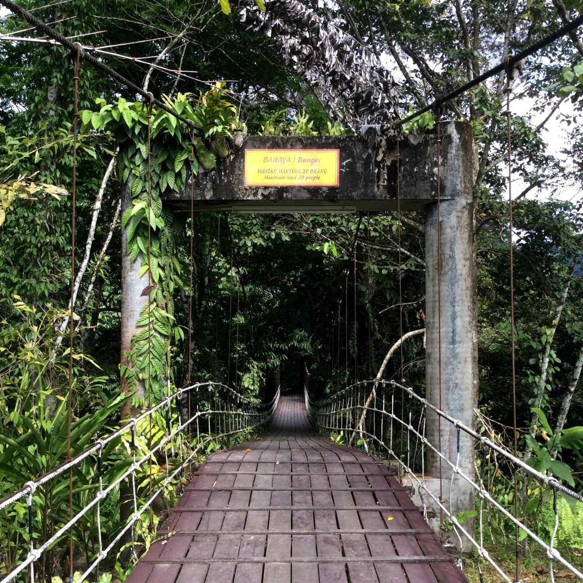 Gunung-Mulu-National-Park-Borneo-30