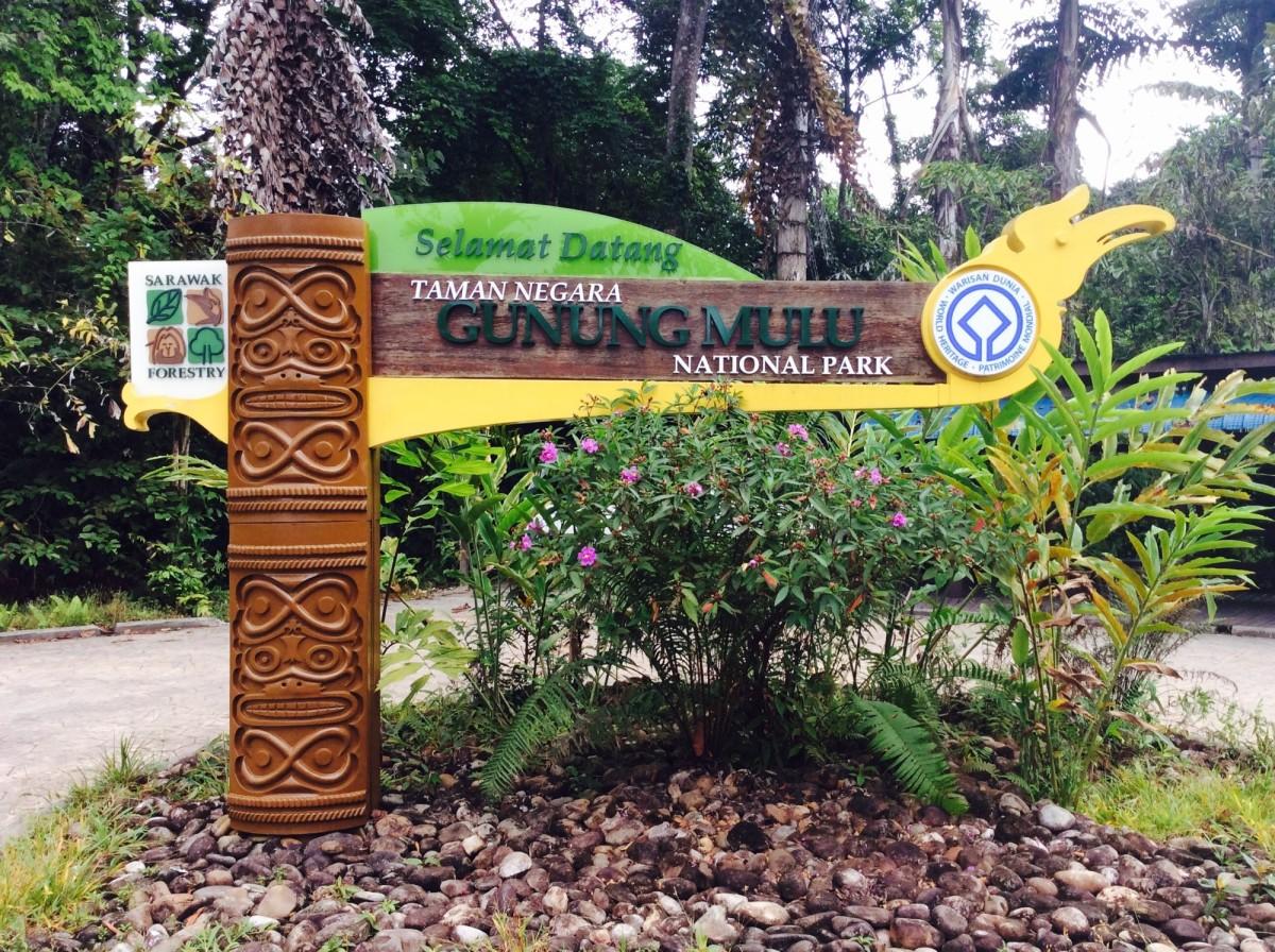 Gunung-Mulu-National-Park-Borneo-41