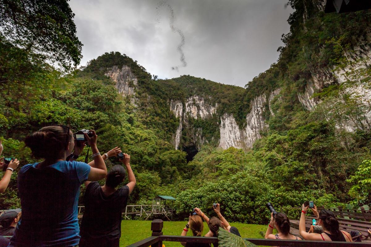 Gunung-Mulu-National-Park-Borneo-8