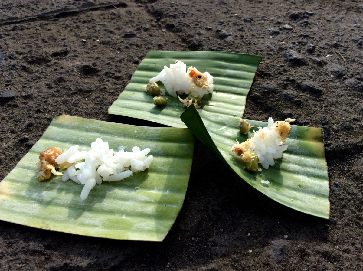Kuta-Ubud-Bali-91