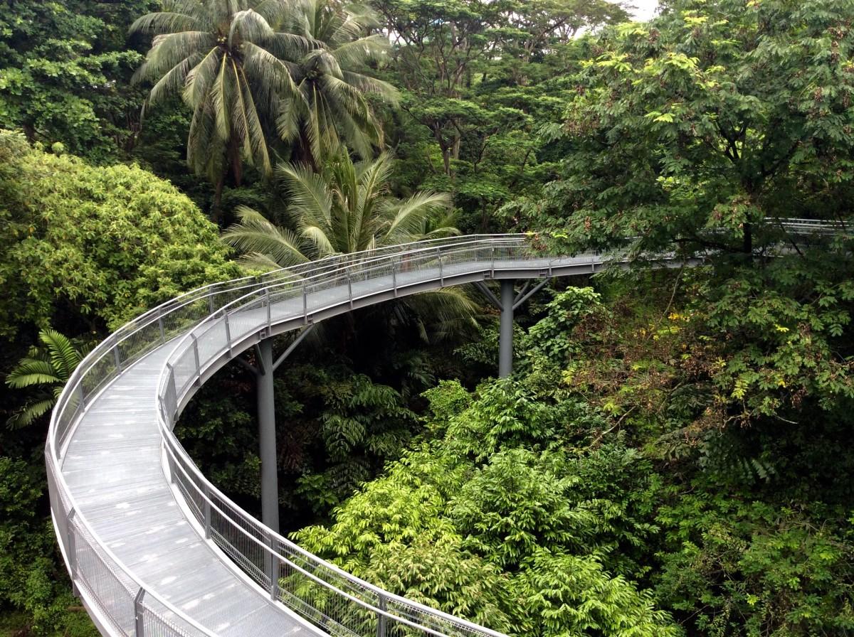 Singapur-50