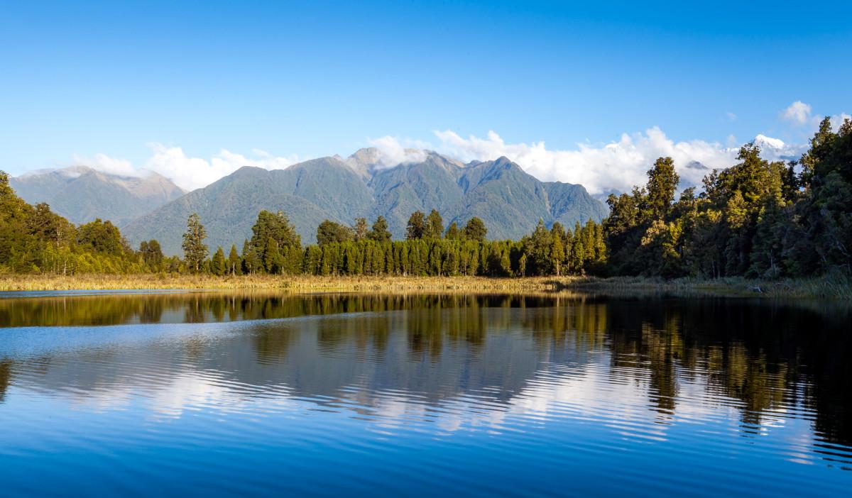Fox-Glacier-Franz-Josef-Glacier-Neuseeland-5