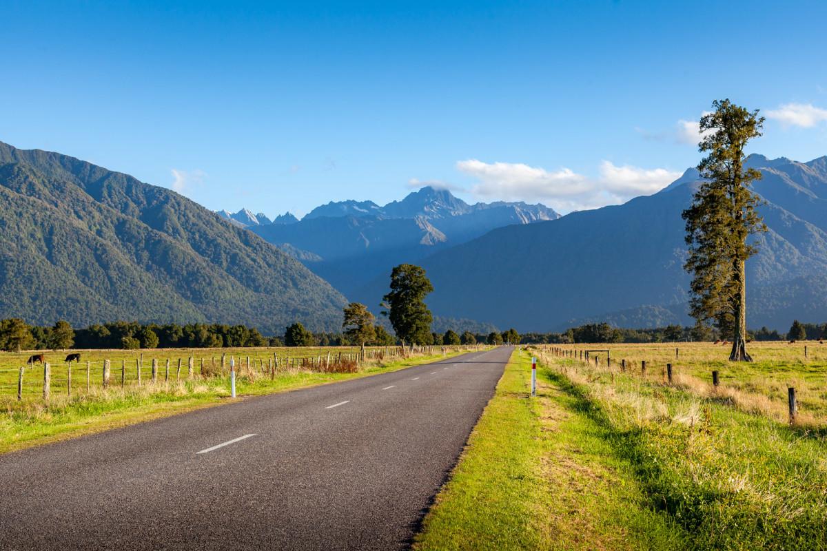 Fox-Glacier-Franz-Josef-Glacier-Neuseeland-7