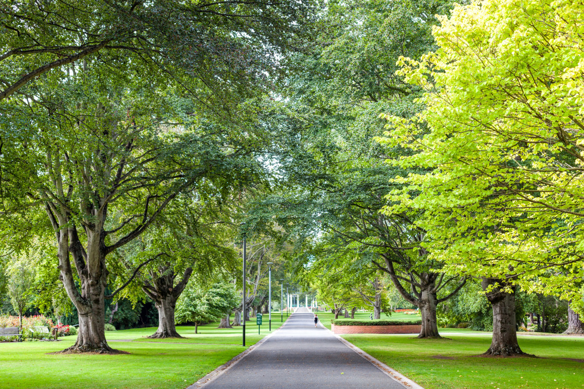 Southern-Scenic-Route-Invercargill-Neuseeland-6