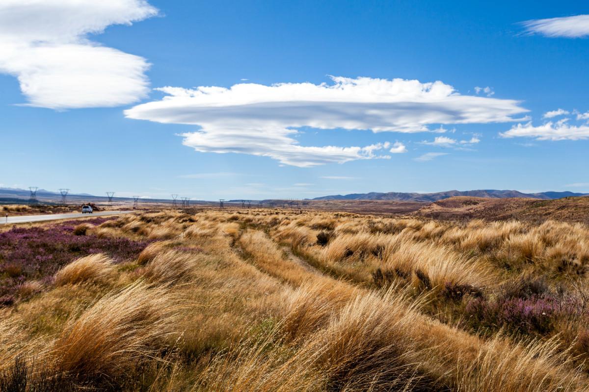 Lake-Taupo-Neuseeland-1