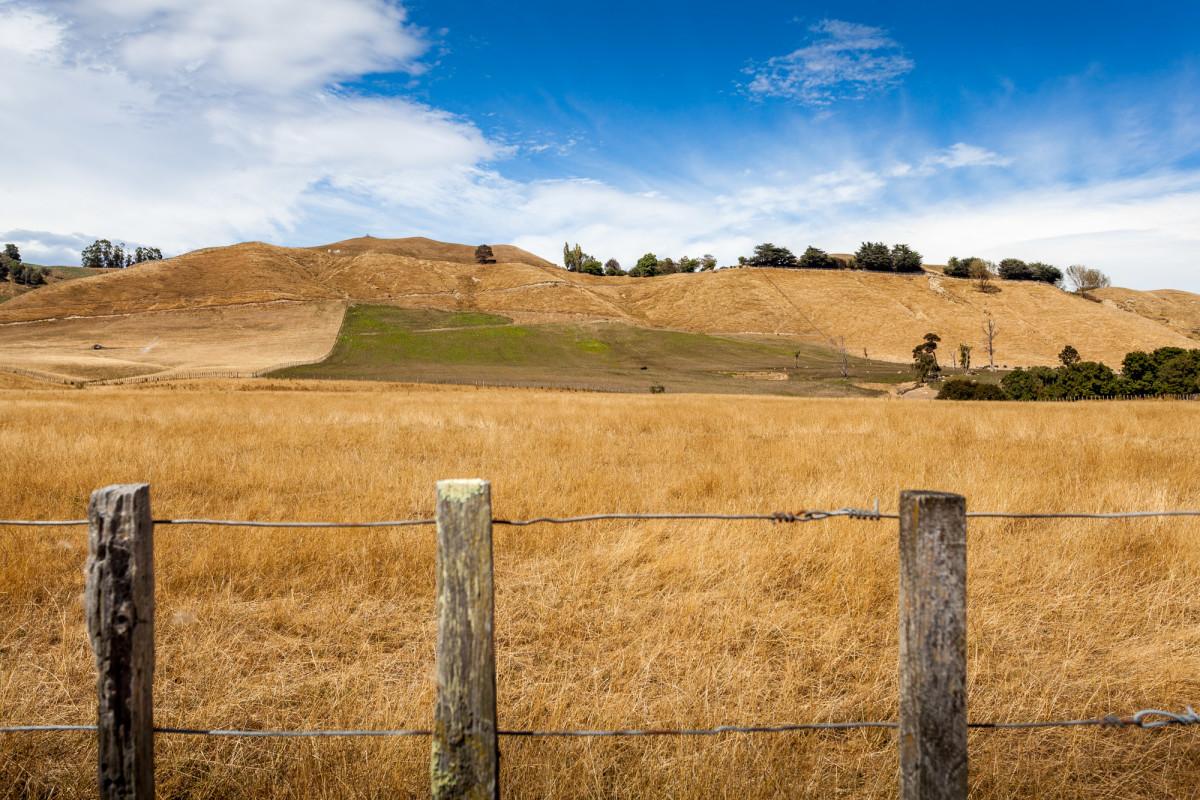 Whitecliff-Boulders-Neuseeland-5