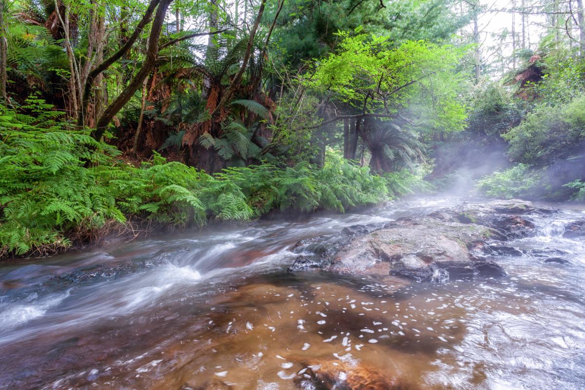 Rotorua-Neuseeland-15