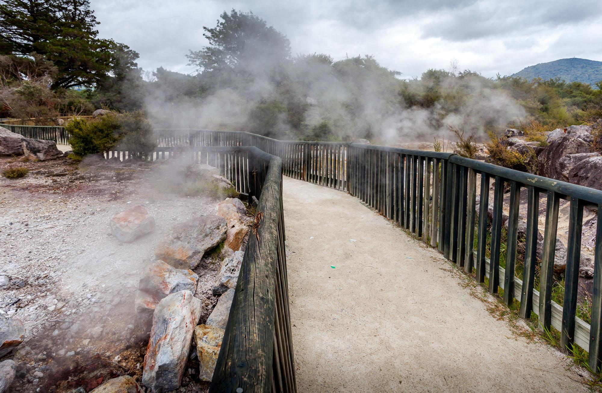 Rotorua – Es dampft und brodelt