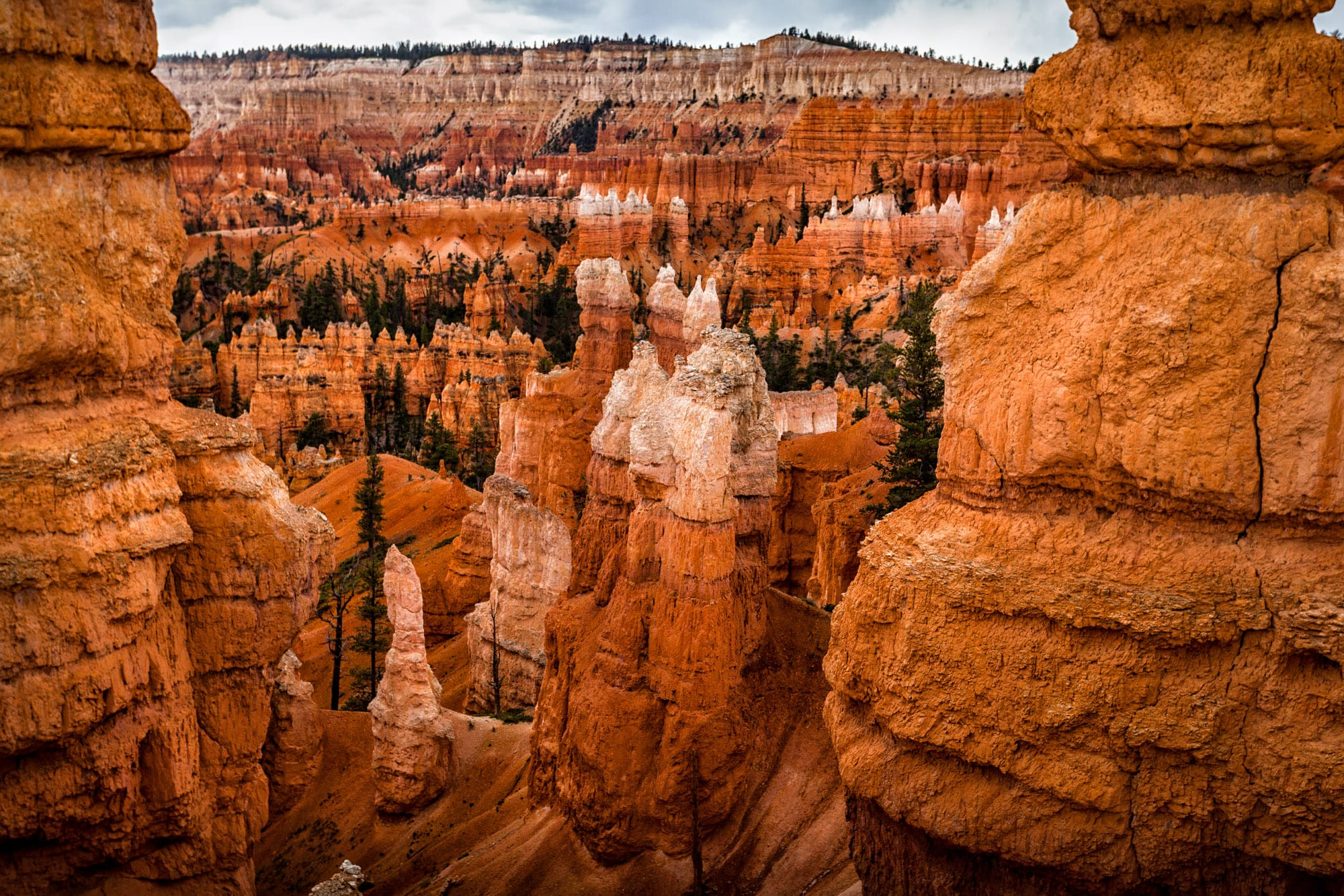 bryce canyon highlight of utah s national Highlights admire astonishing rock formations, impressive canyons and navajo sandstone cliffs in a landscape carved by time hike amid bryce canyon national park's remarkable geologic features, including hoodoos and spires.