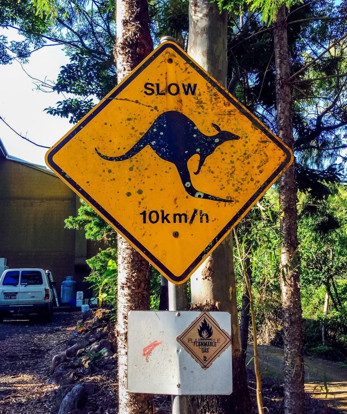 Bundaberg-Australien-3