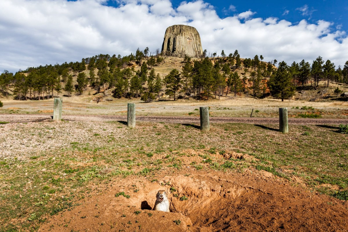 Devils-Tower-Wyoming-USA-2