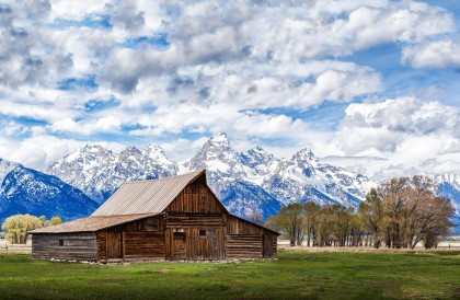 Grand-Teton-Nationalpark-Wyoming-USA-Head