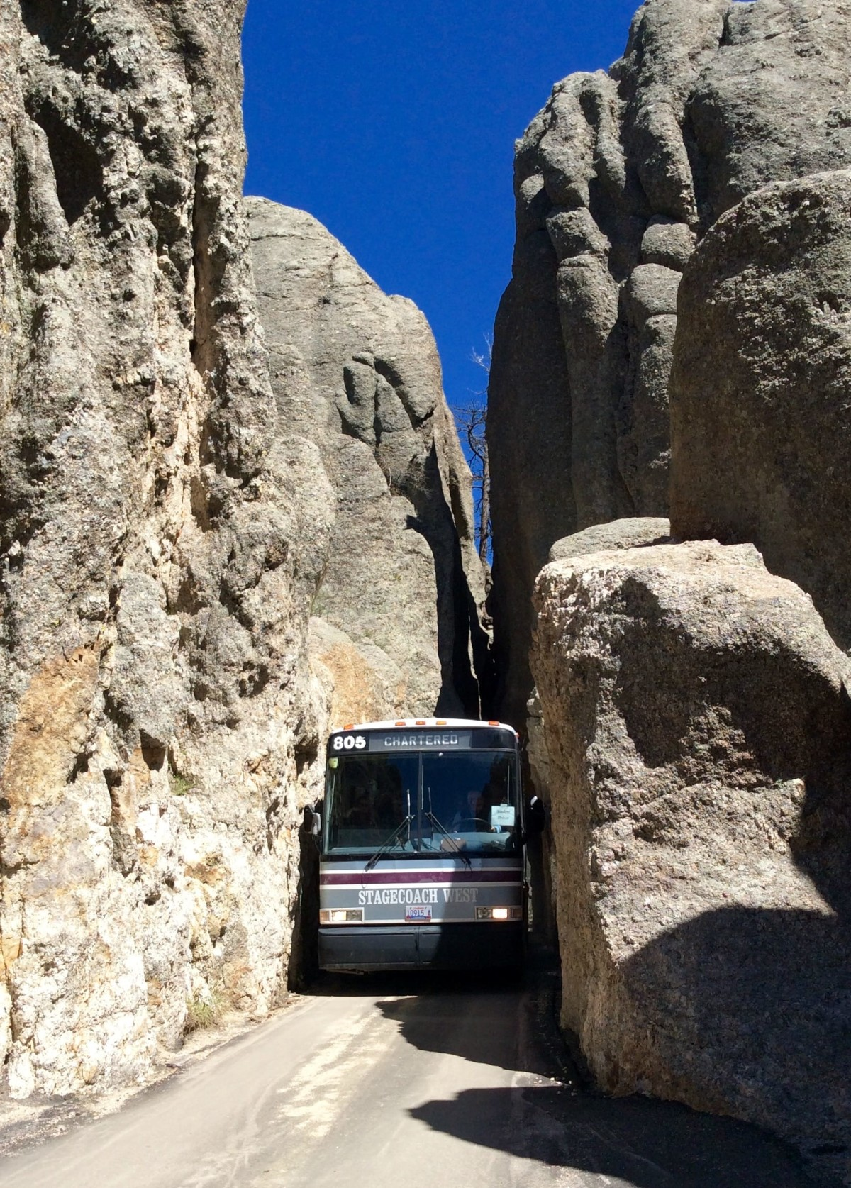 Needles-Highway-South-Dakota-USA-5