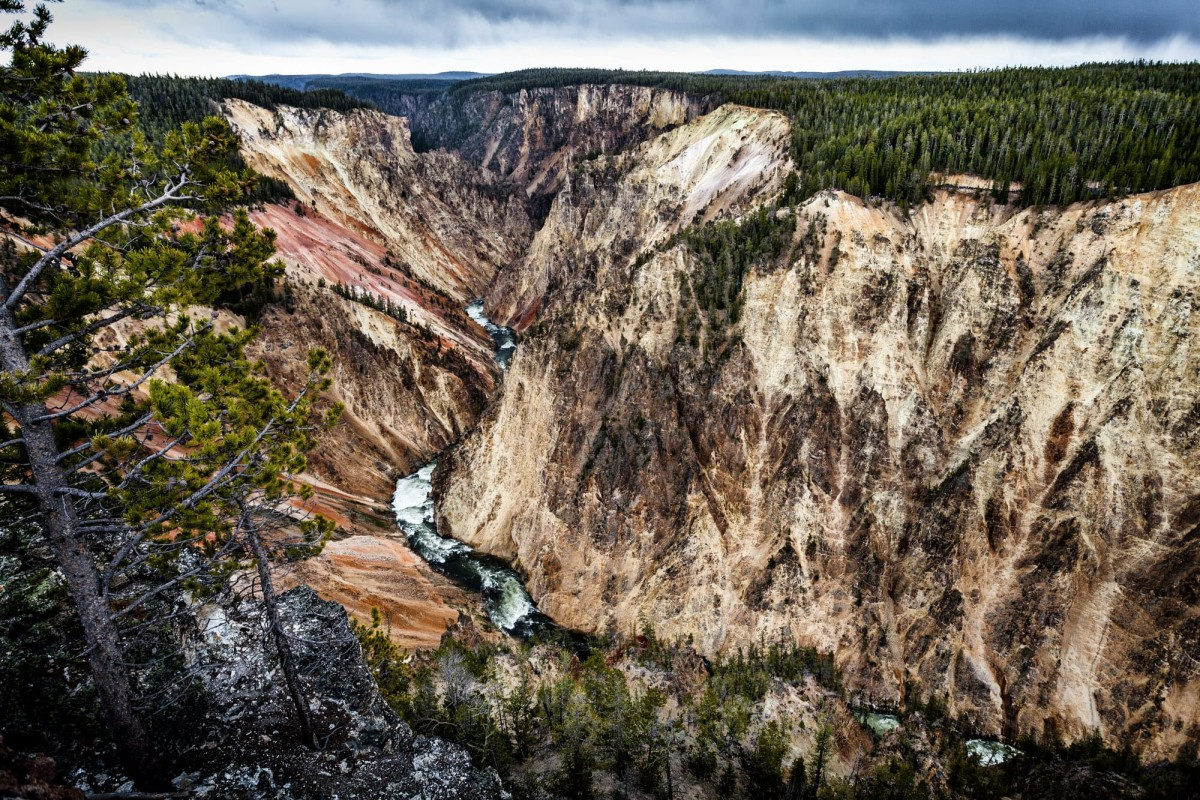 Yellowstone-Nationalpark-Wyoming-USA-20