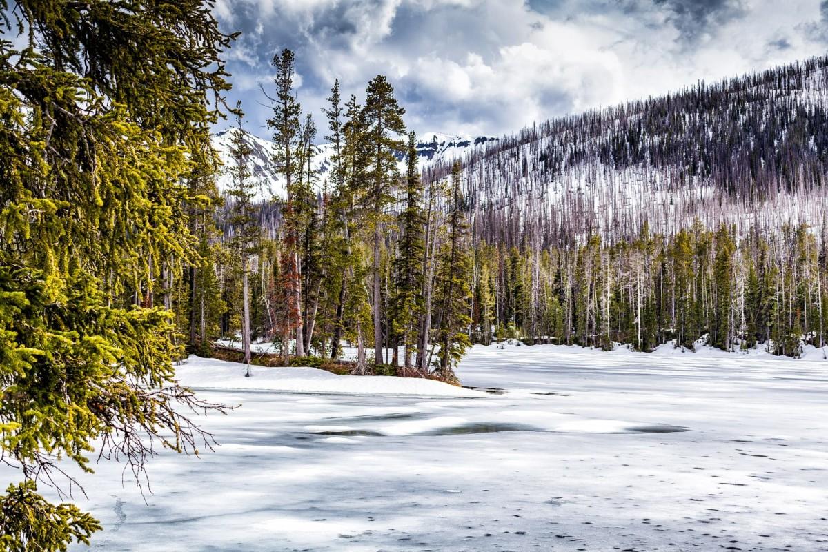 Yellowstone-Nationalpark-Wyoming-USA-21
