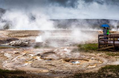 Yellowstone-Nationalpark-Wyoming-USA-Head