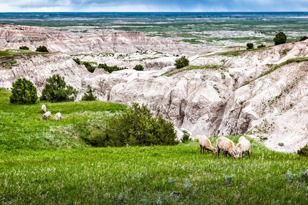 Badlands-Nationalpark-South-Dakota-USA-8