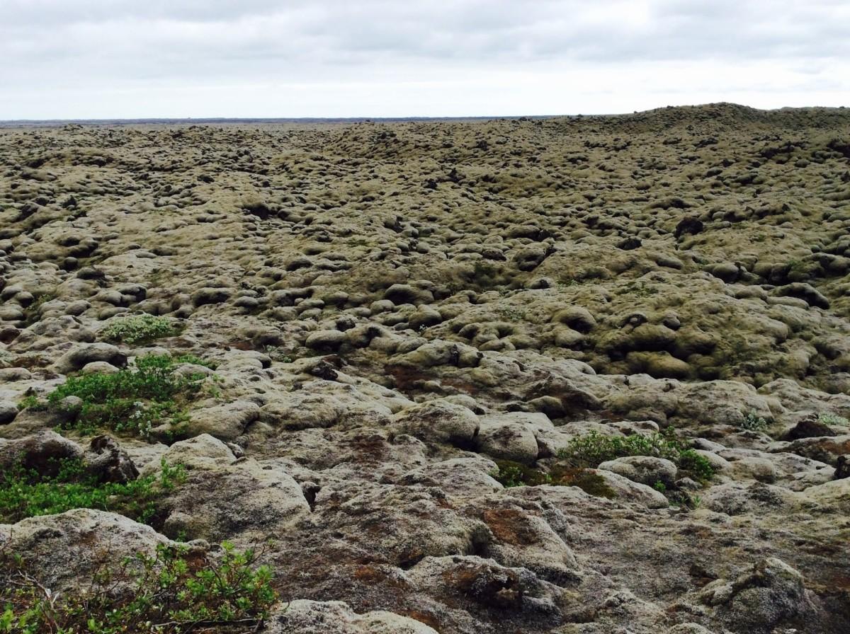 island-ringstrasse-dverghamrar-5