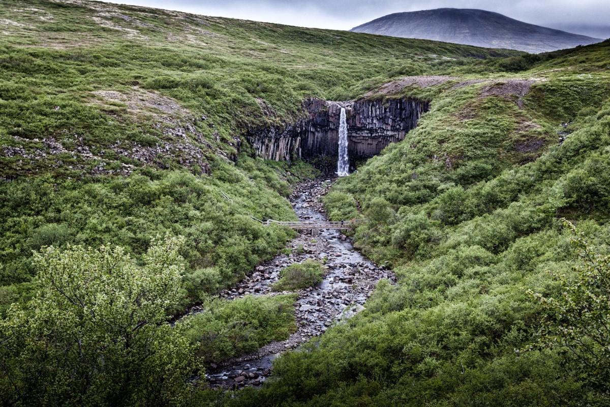 island-ringstrasse-svartifoss-3