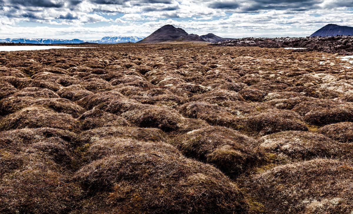 island-ringstrasse-myvatn-36